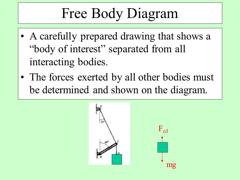 Free Body Diagram A carefully prepared drawing that shows a body of interest separated from all interacting bodies.