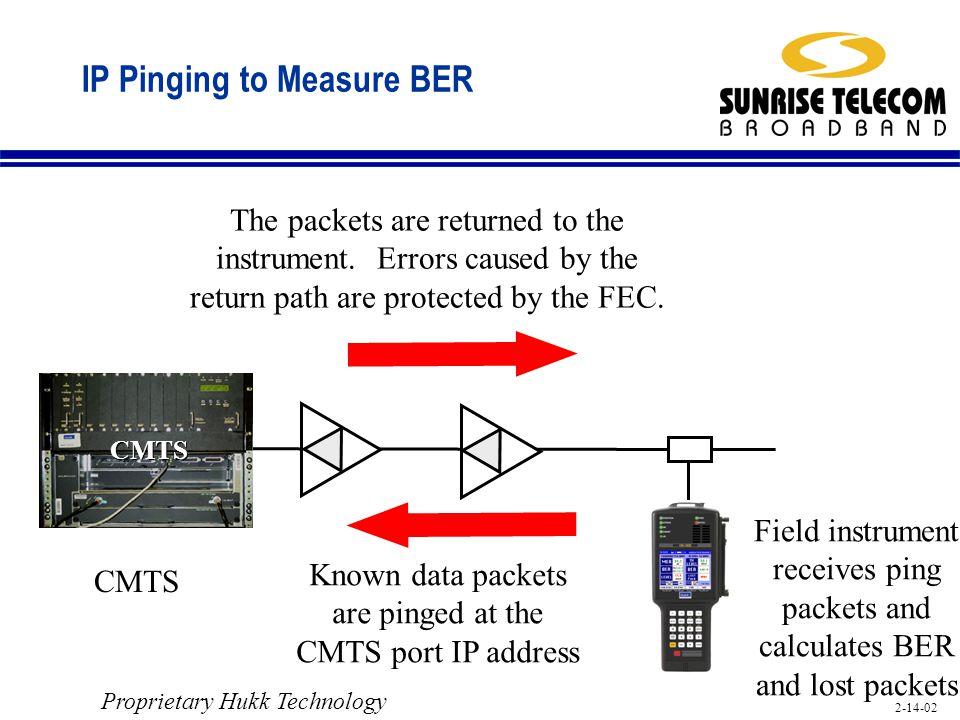 IP Pinging to Measure BER