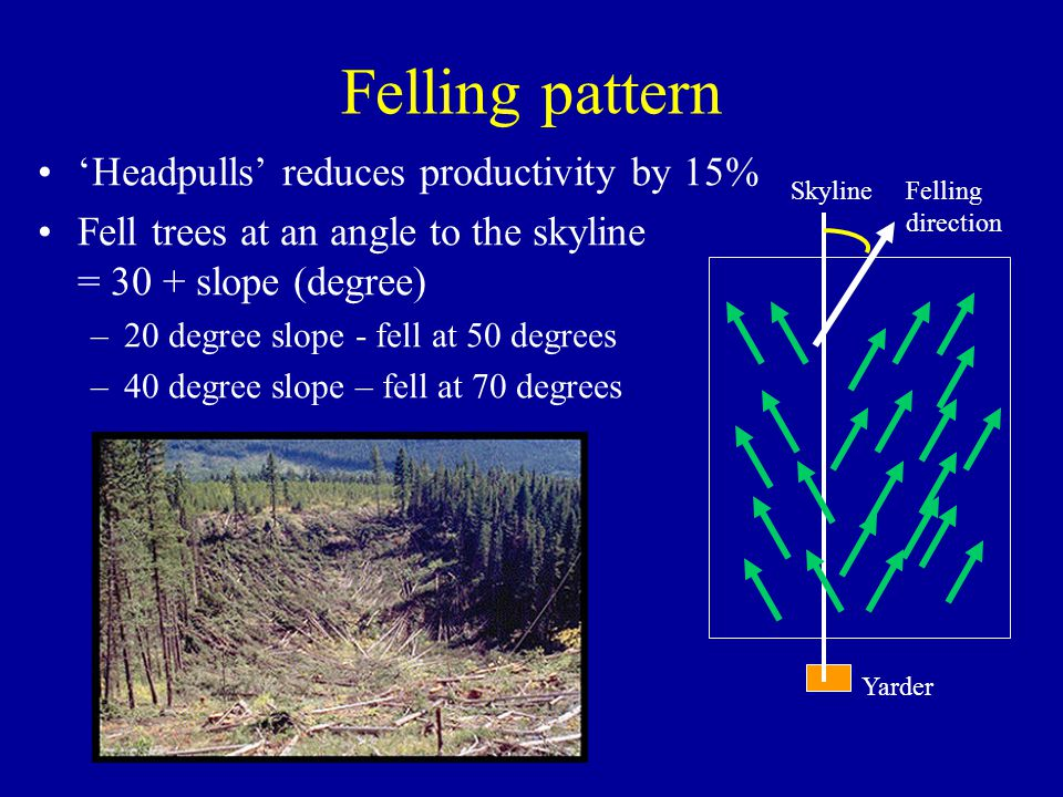 Felling pattern 'Headpulls' reduces productivity by 15%