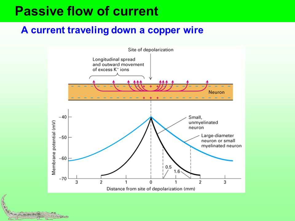 Passive flow of current