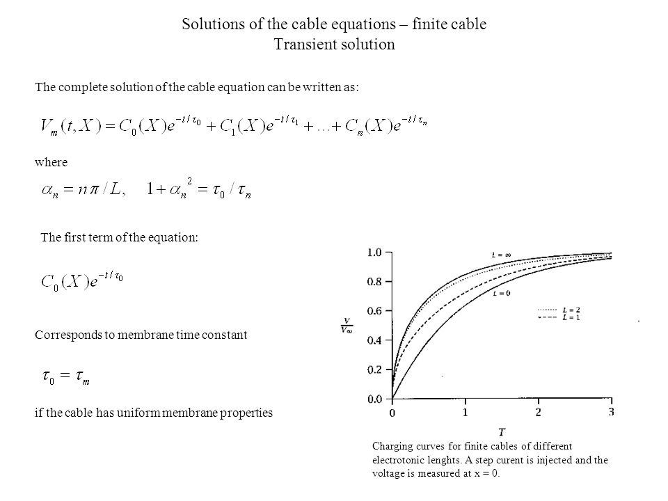 Solutions of the cable equations – finite cable Transient solution