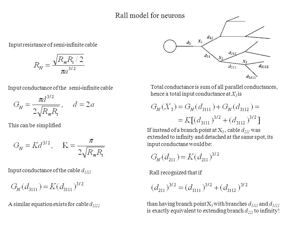 Rall model for neurons Input resistance of semi-infinite cable