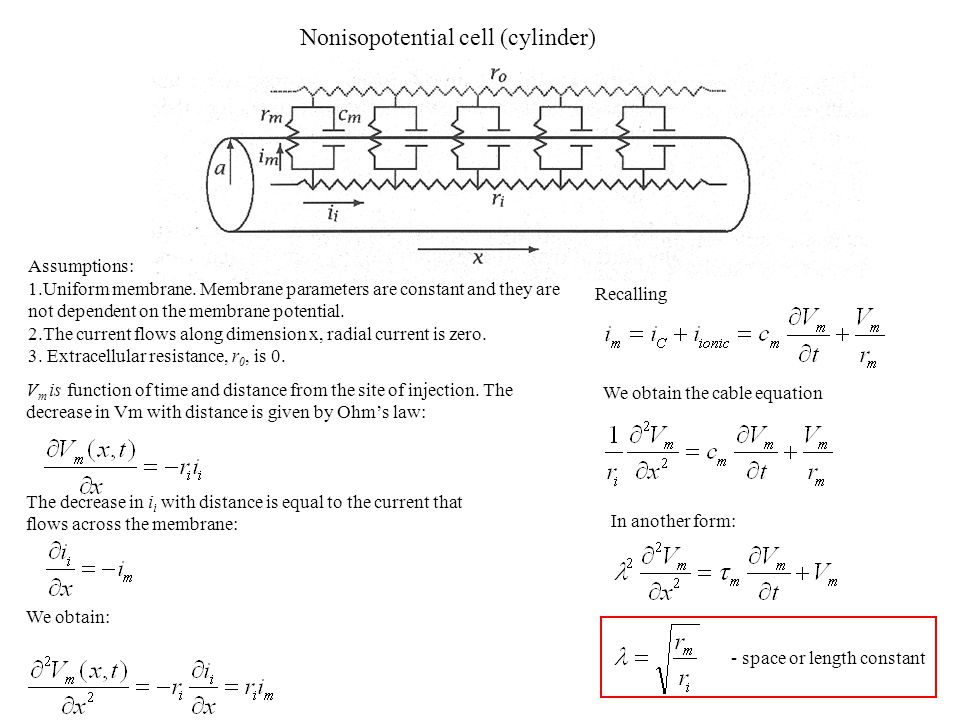 Nonisopotential cell (cylinder)