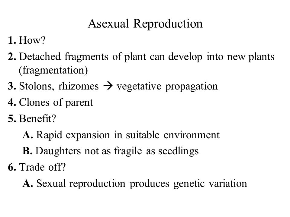Asexual Reproduction 1. How