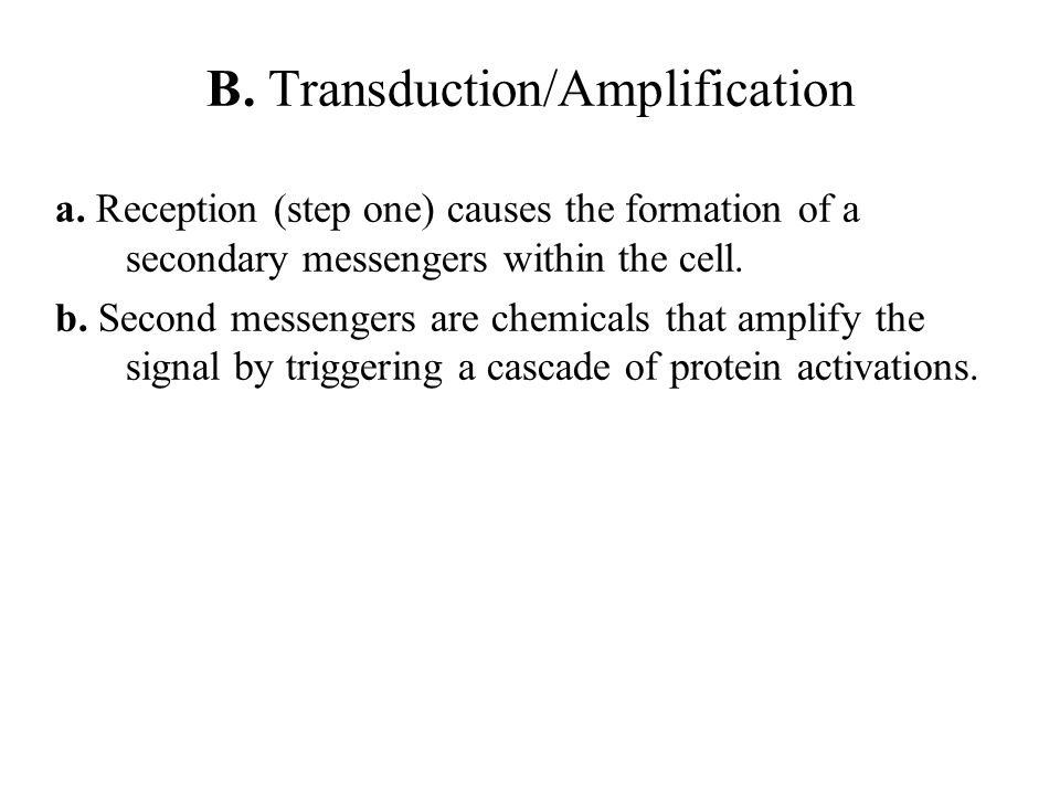 B. Transduction/Amplification