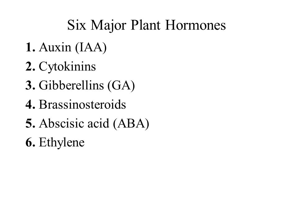 Six Major Plant Hormones
