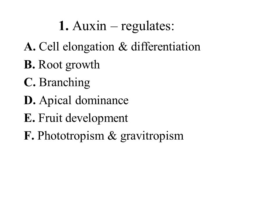 1. Auxin – regulates: A. Cell elongation & differentiation