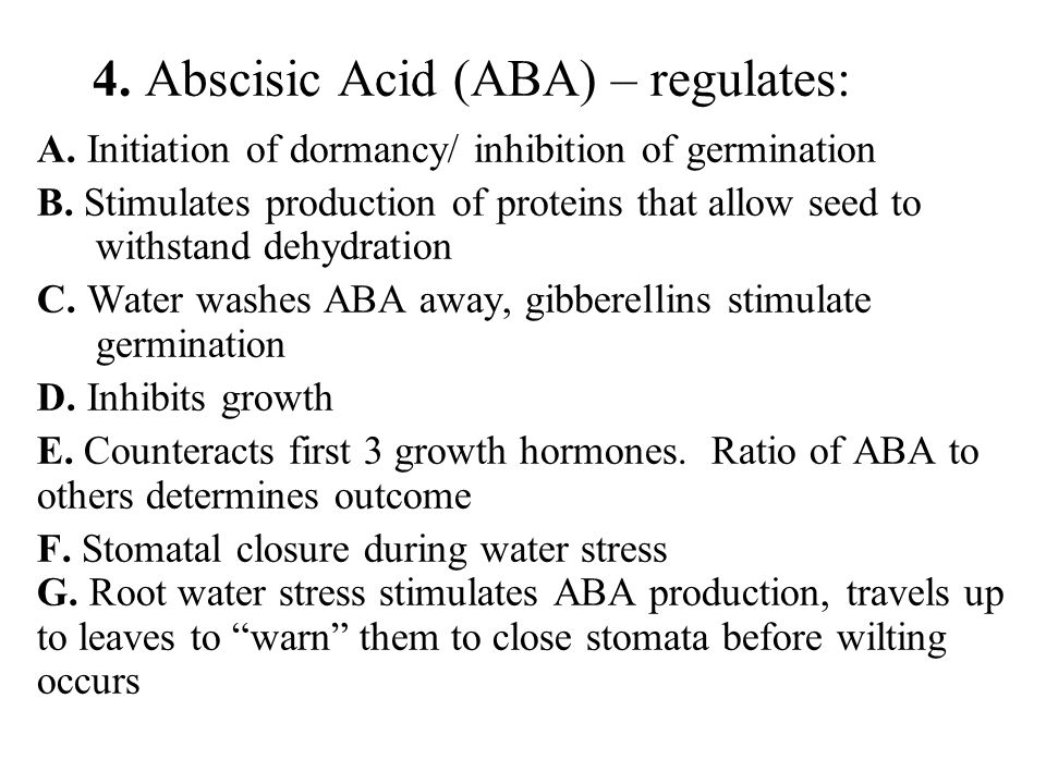 4. Abscisic Acid (ABA) – regulates: