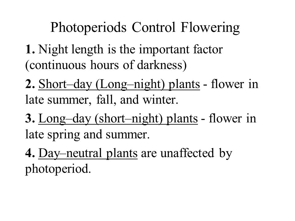 Photoperiods Control Flowering
