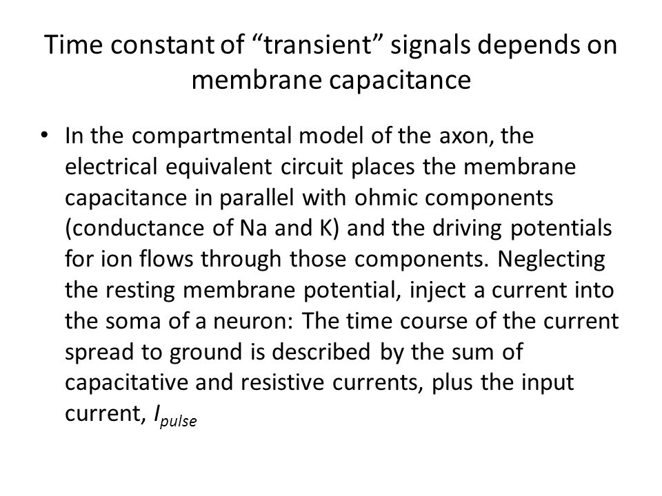 Time constant of transient signals depends on membrane capacitance