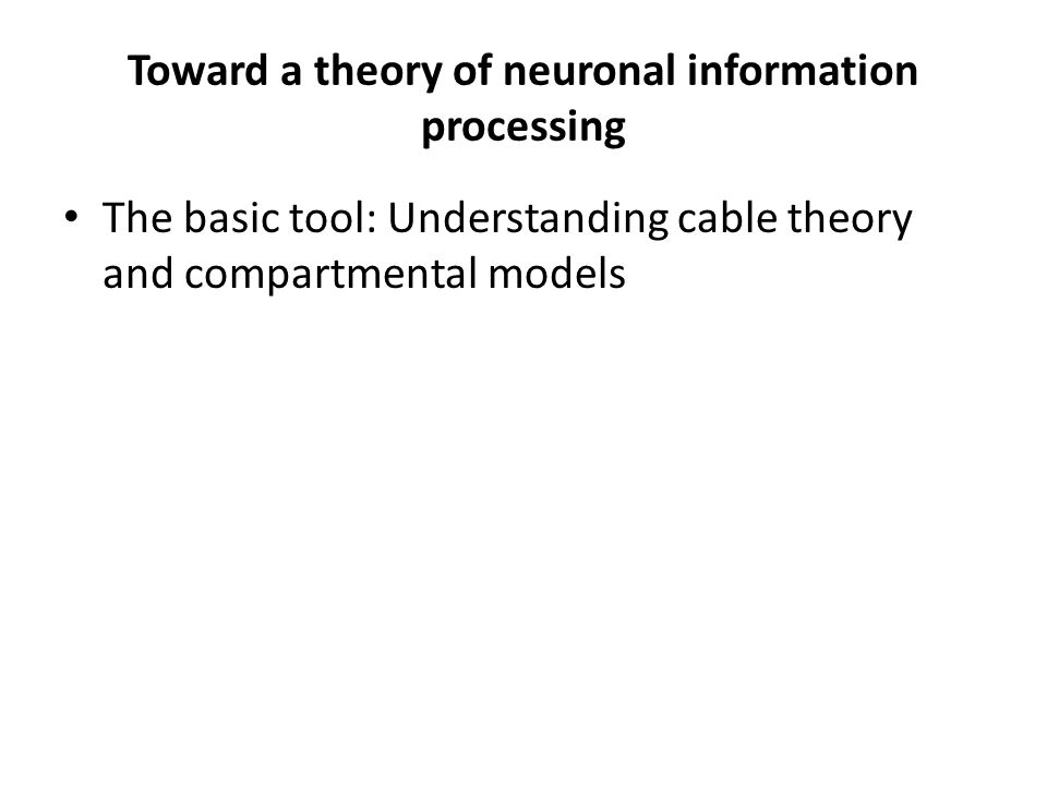 Toward a theory of neuronal information processing