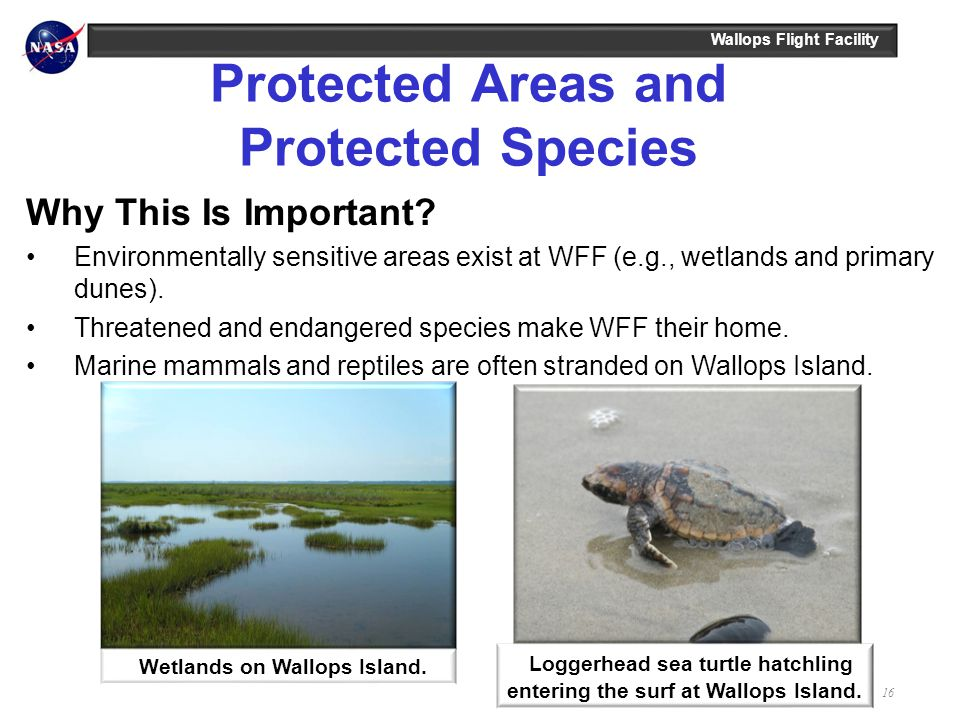 Protected Areas and Protected Species