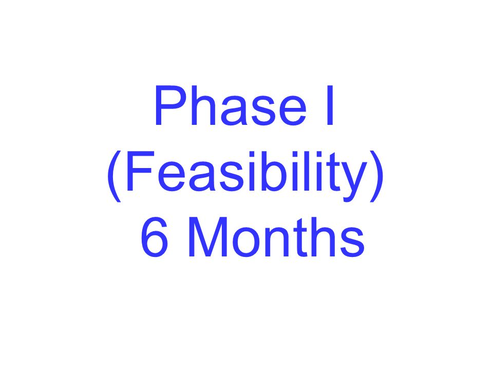 Phase I (Feasibility) 6 Months