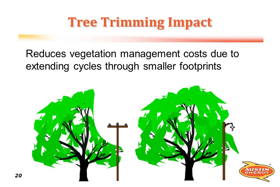 Tree Trimming Impact Reduces vegetation management costs due to extending cycles through smaller footprints.