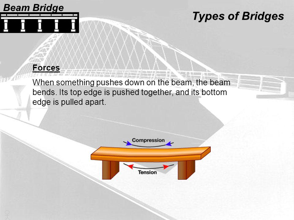 Types of Bridges Beam Bridge Forces