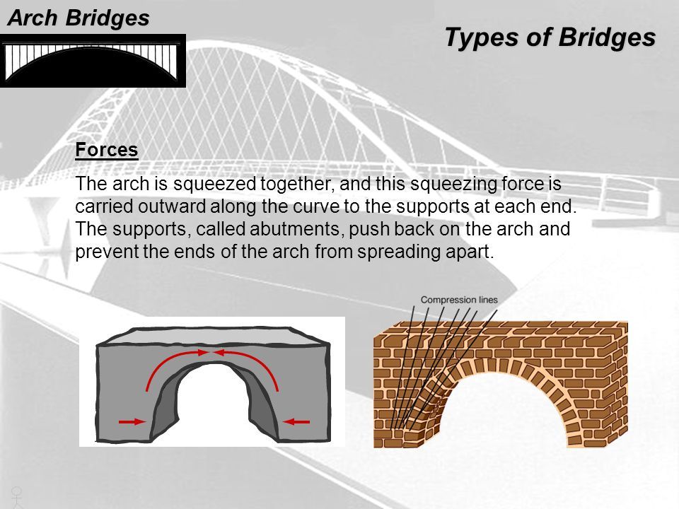 Types of Bridges Arch Bridges Forces
