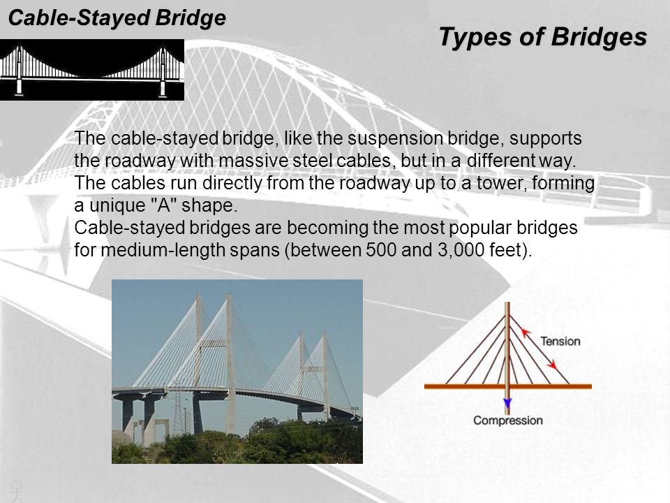 Types of Bridges Cable-Stayed Bridge