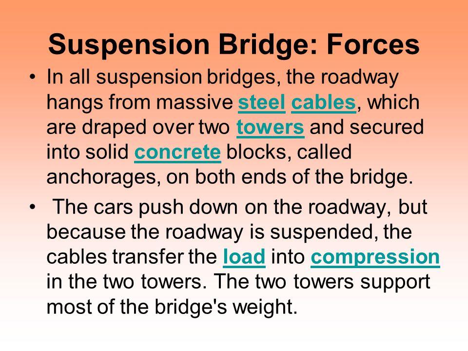 Suspension Bridge: Forces