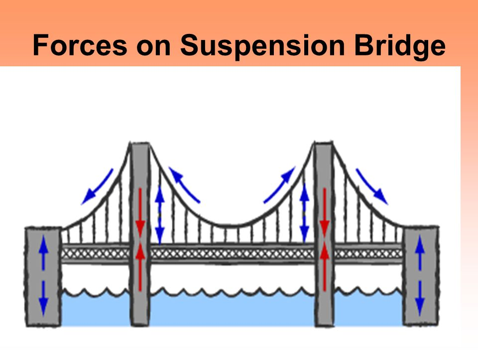 Forces on Suspension Bridge