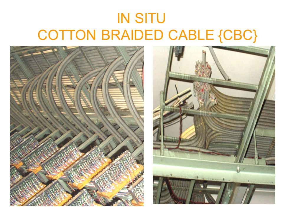 IN SITU COTTON BRAIDED CABLE {CBC}