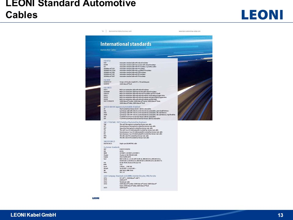 LEONI Standard Automotive Cables