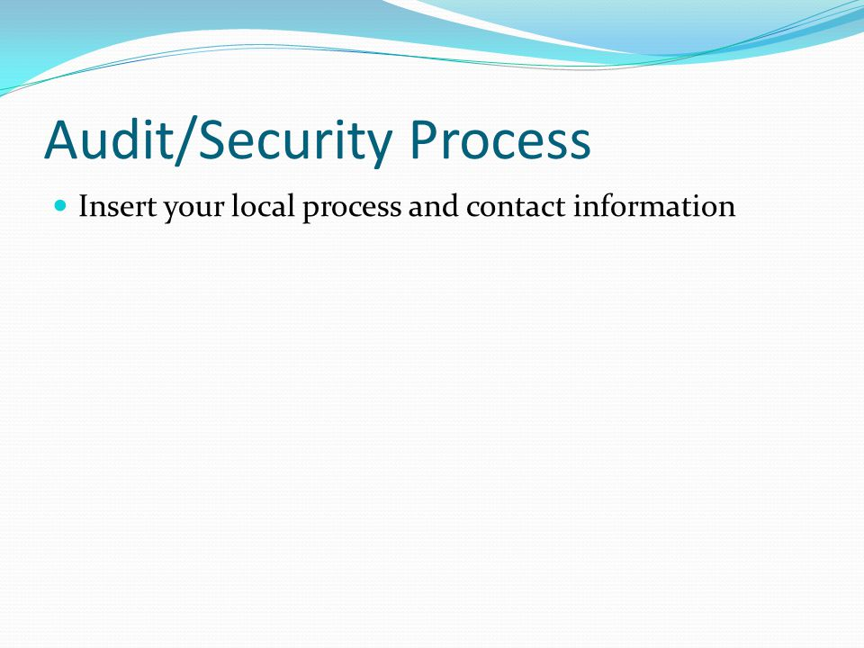 Audit/Security Process