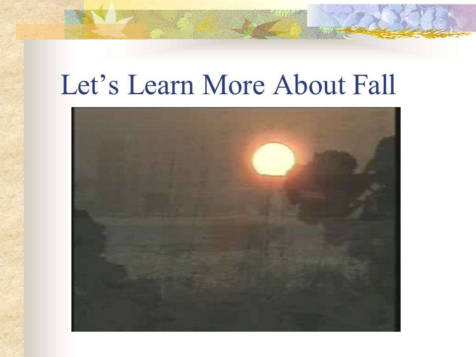 Let's Learn More About Fall