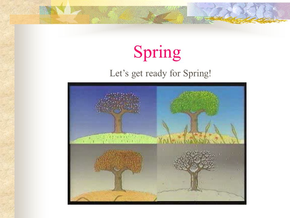 Let's get ready for Spring!