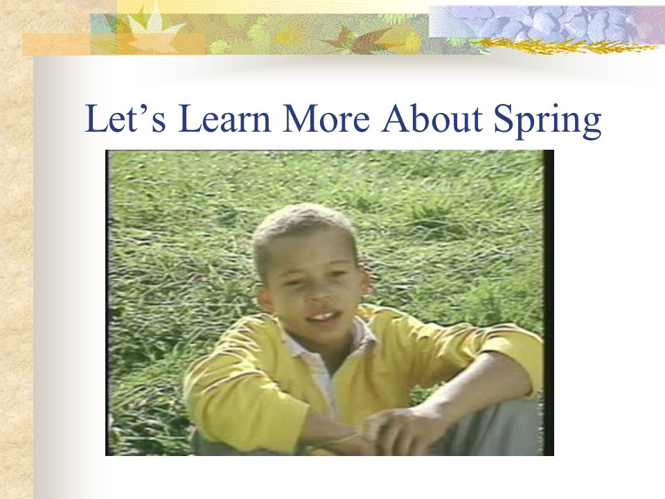 Let's Learn More About Spring