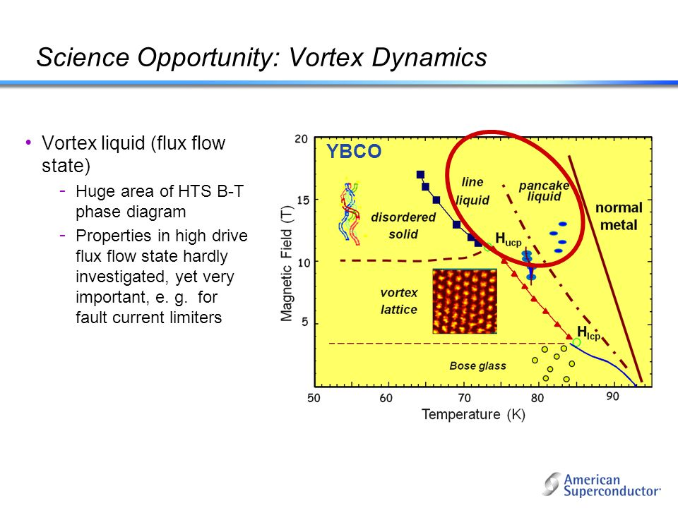 Science Opportunity: Vortex Dynamics