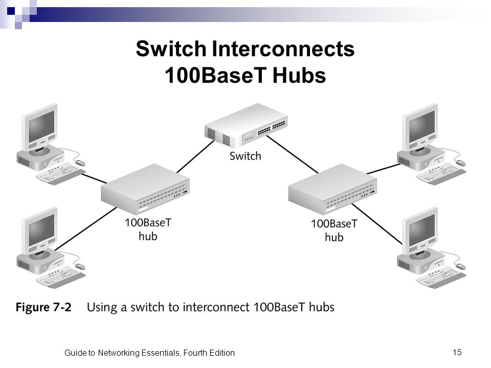 Switch Interconnects 100BaseT Hubs