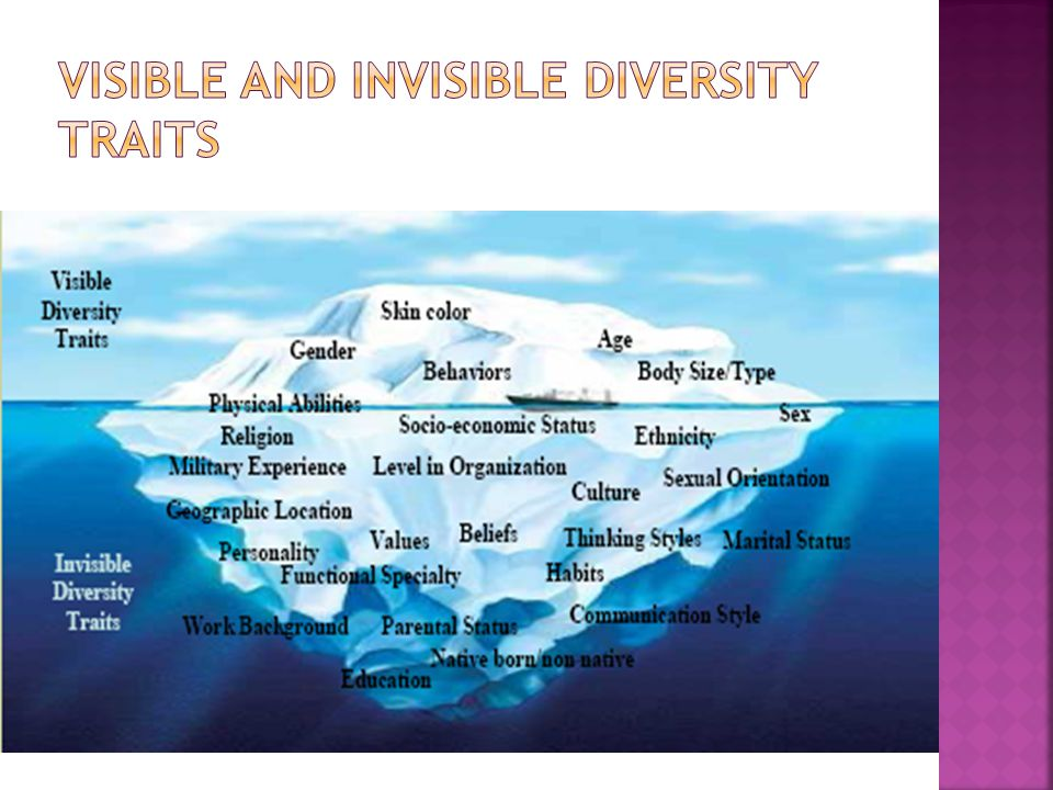 Visible and Invisible Diversity Traits