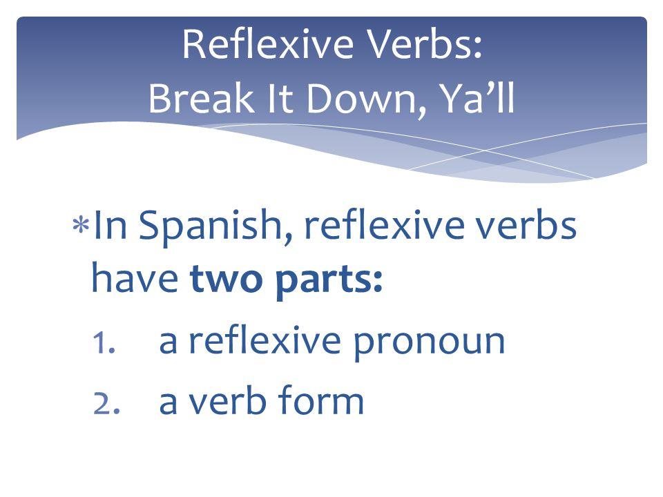Reflexive Verbs: Break It Down, Ya'll