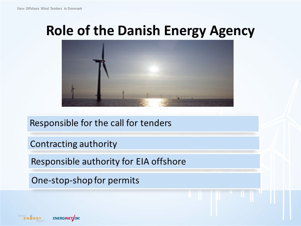 Role of the Danish Energy Agency