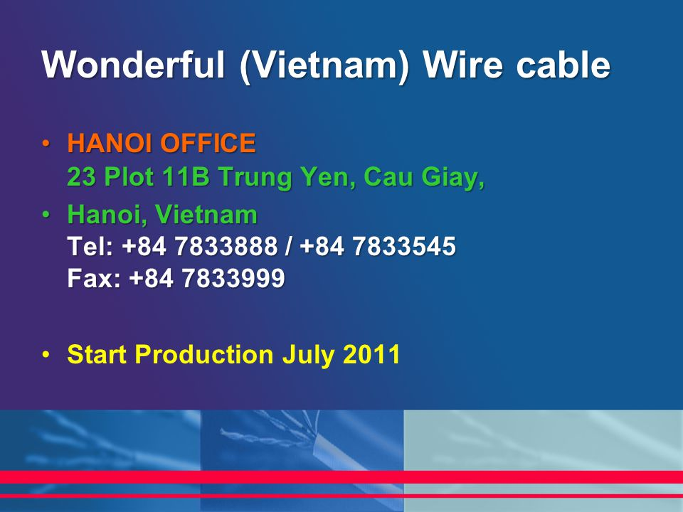 Wonderful (Vietnam) Wire cable