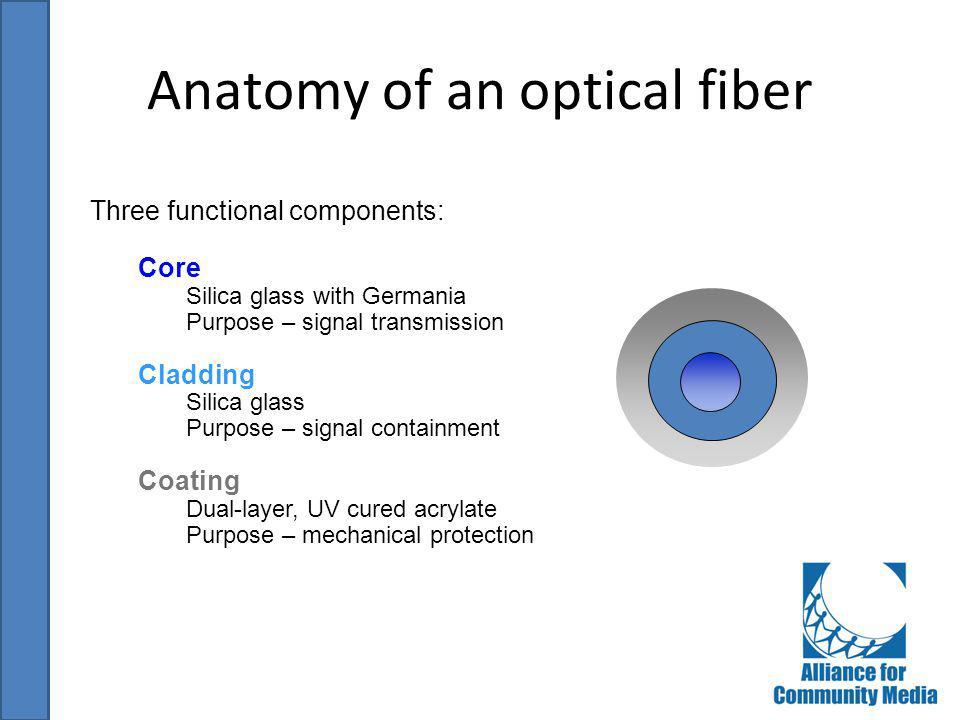 Anatomy of an optical fiber