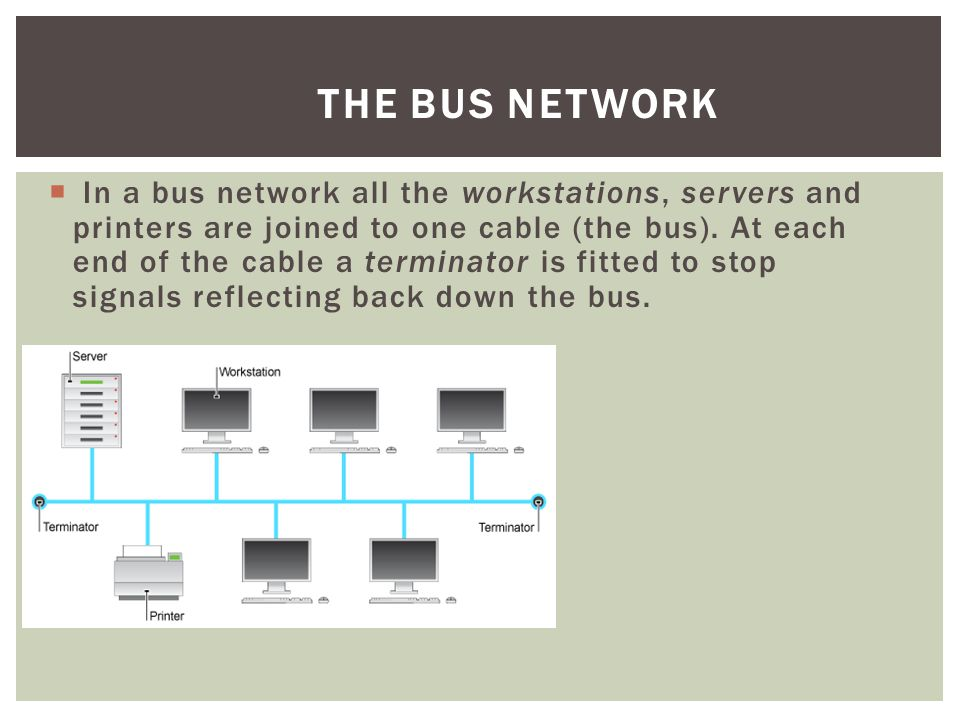 The Bus Network
