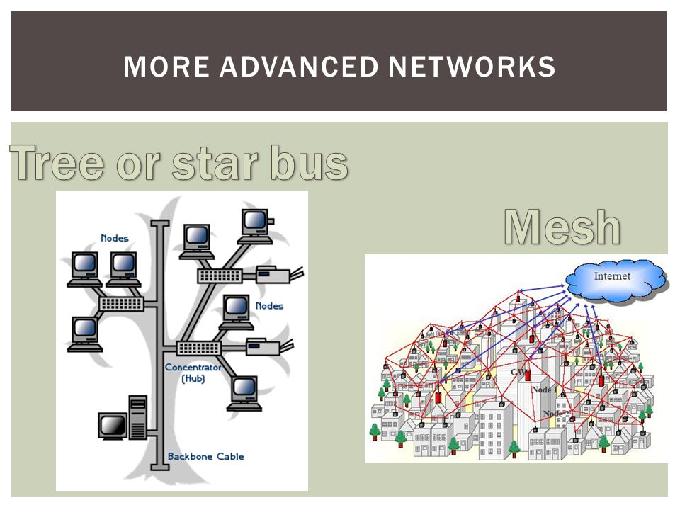 More Advanced Networks