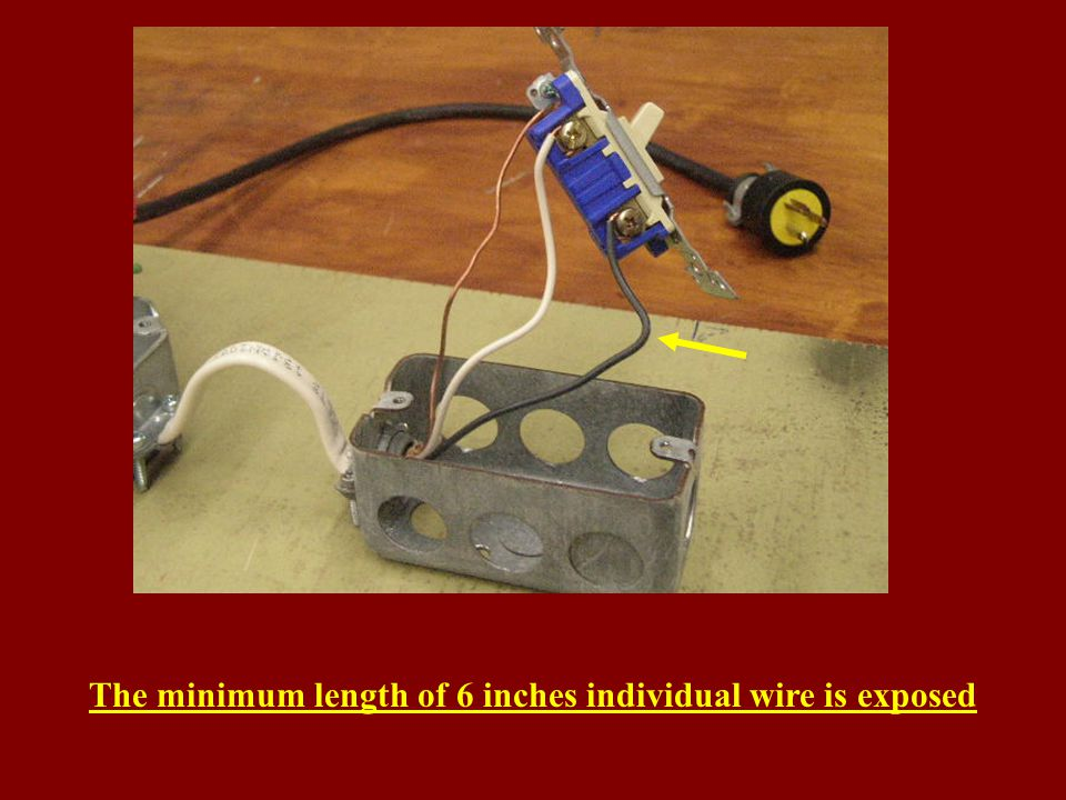 The minimum length of 6 inches individual wire is exposed