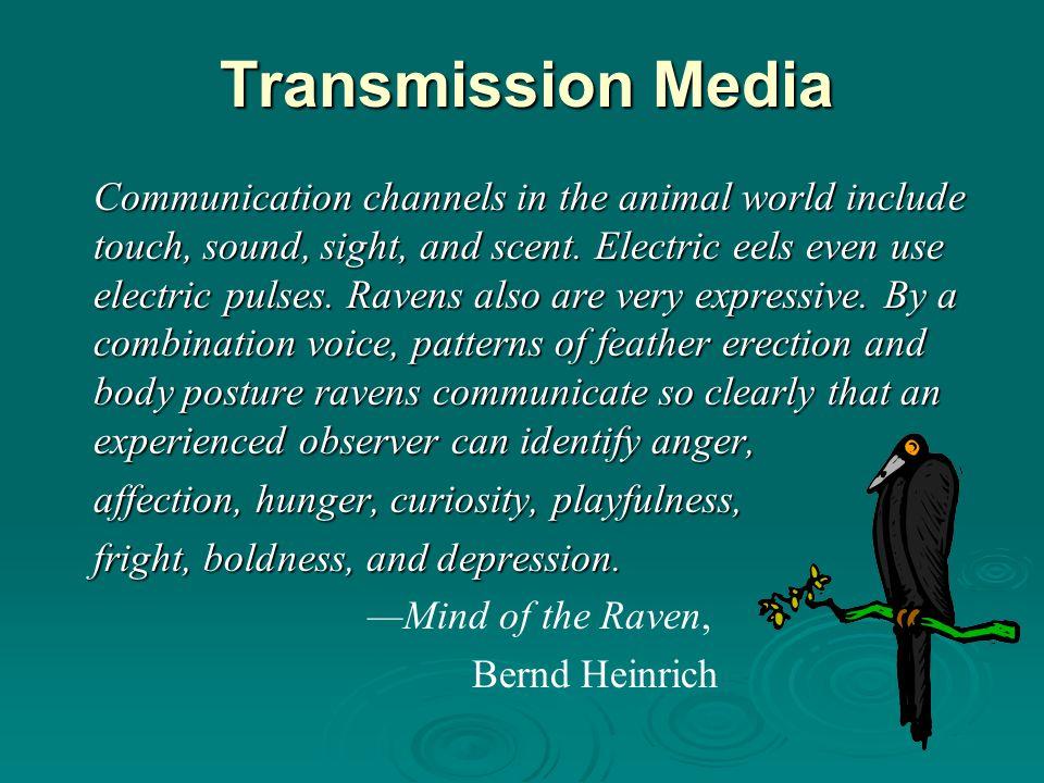 Transmission Media
