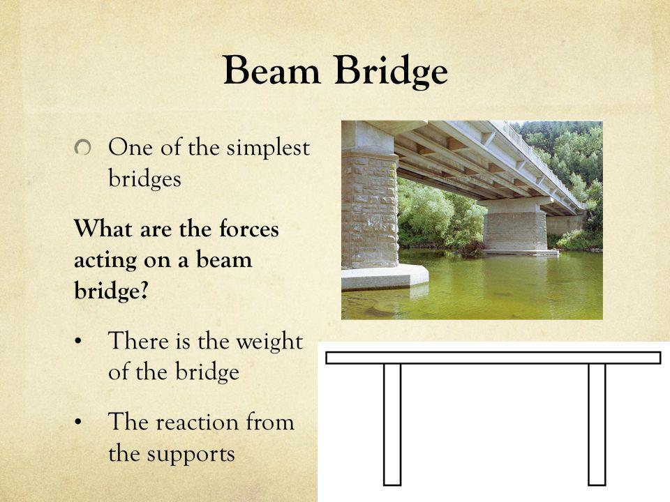 the physics of bridges Scott thompson mrs meggison physics honors 15 april 2008 the physics of bridges bridges are an integral part of everyday life from bridges spanning vast bodies of water.