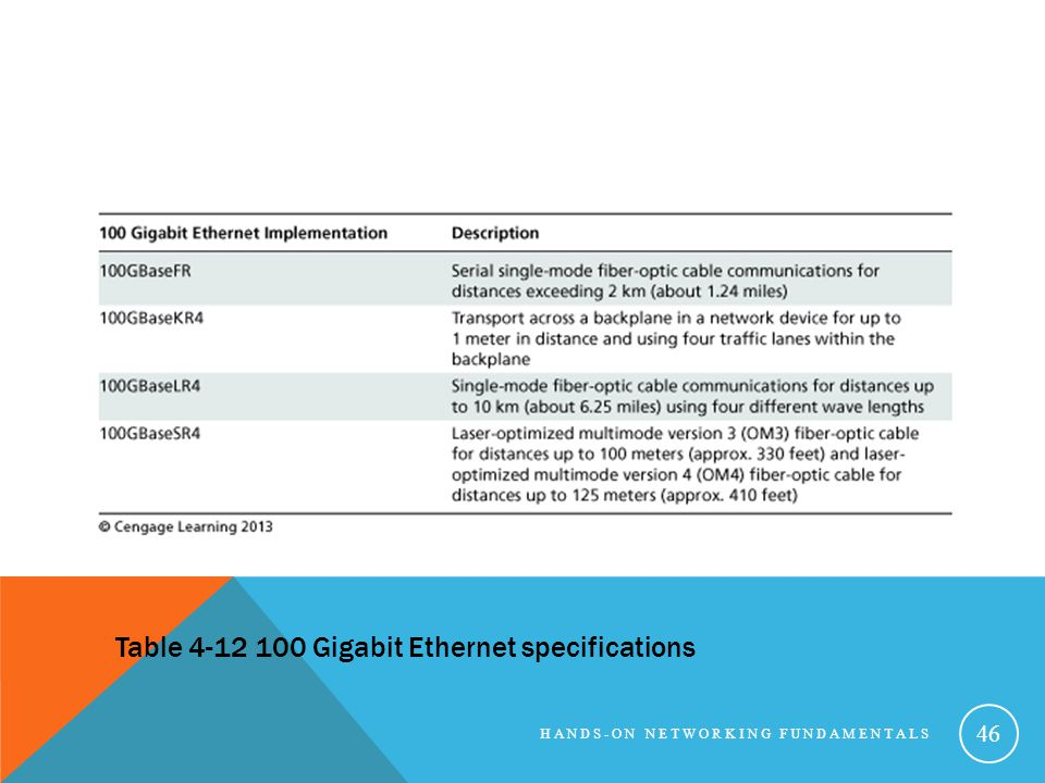 Table 4-12 100 Gigabit Ethernet specifications