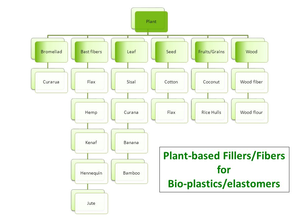 Plant-based Fillers/Fibers Bio-plastics/elastomers
