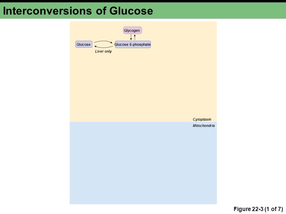 Interconversions of Glucose