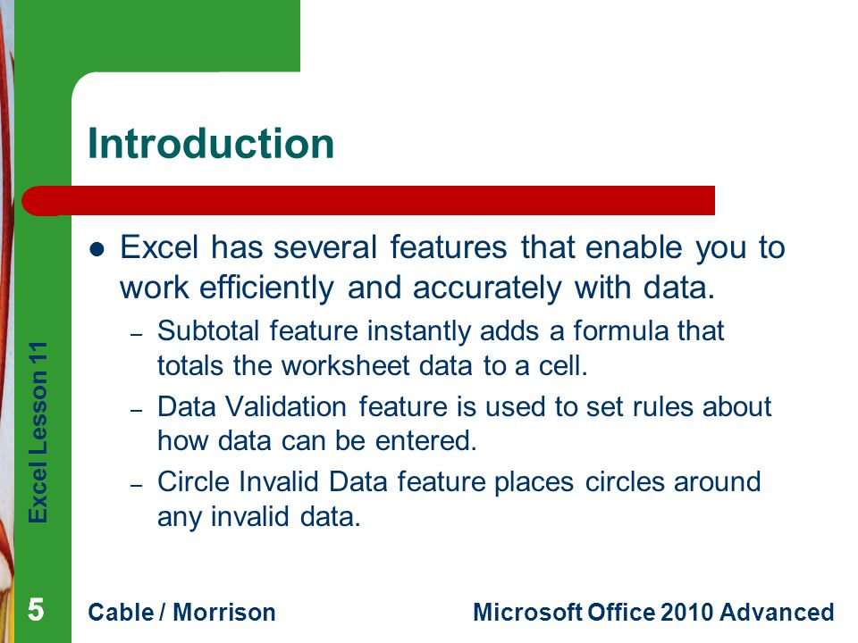 Introduction Excel has several features that enable you to work efficiently and accurately with data.