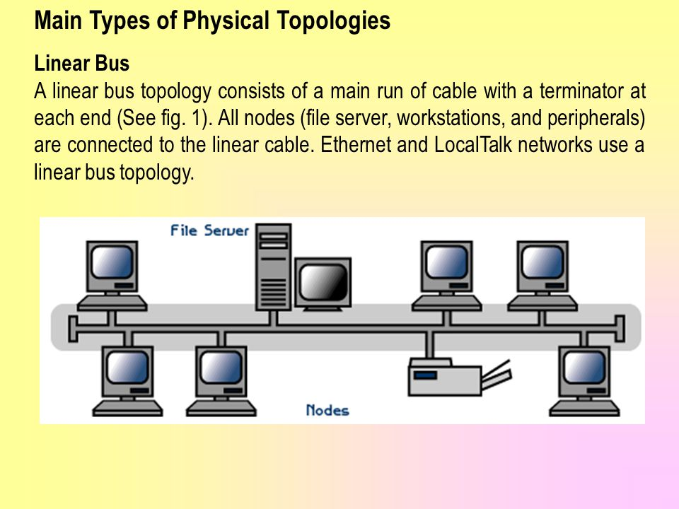Main Types of Physical Topologies
