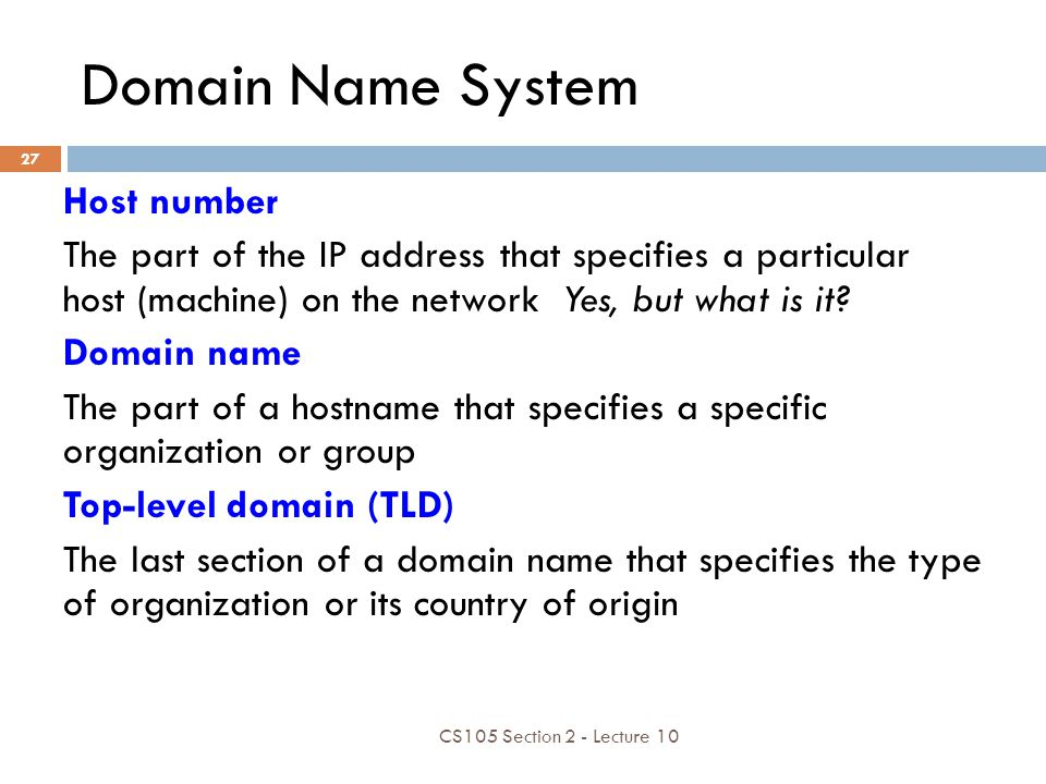Domain Name System Host number