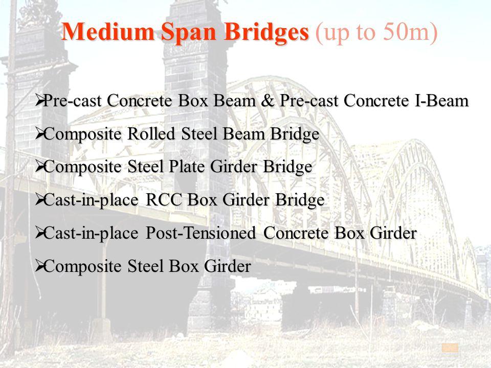 Medium Span Bridges (up to 50m)