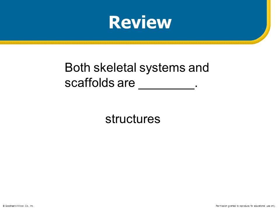 Review Both skeletal systems and scaffolds are ________. structures