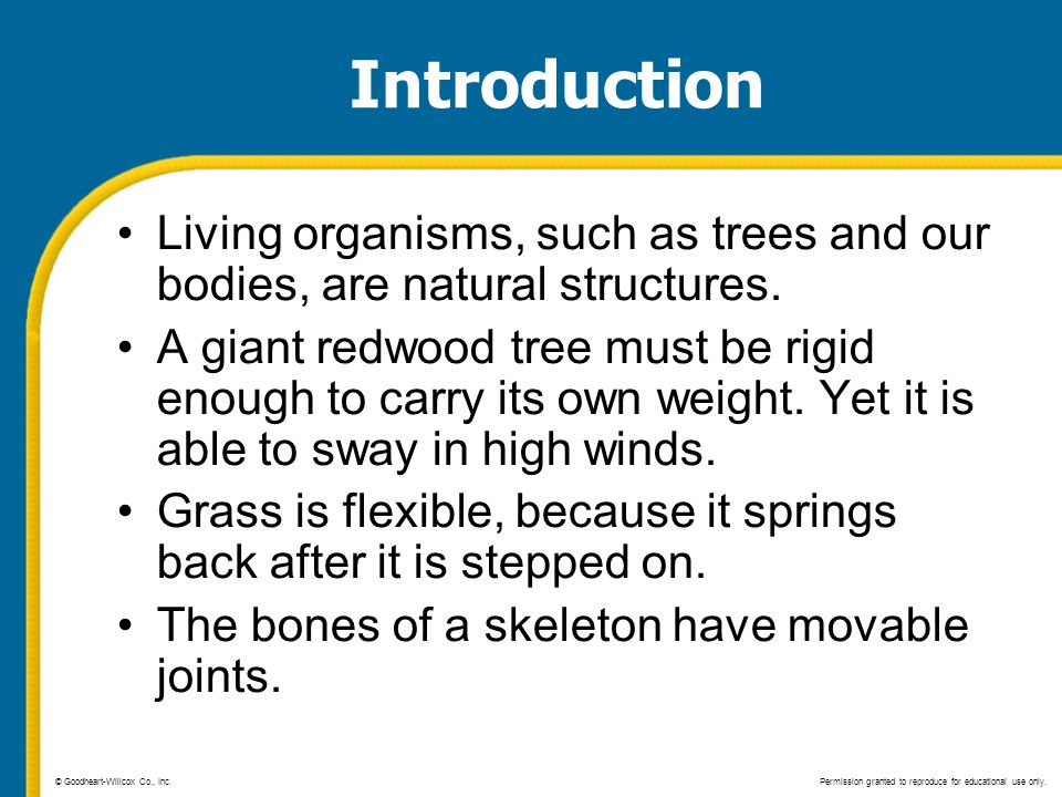 Introduction Living organisms, such as trees and our bodies, are natural structures.